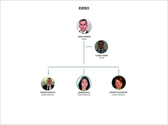 EBIC-WEB_Türkçe